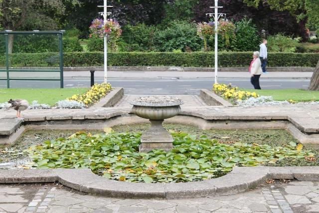 Yorkshire pond
