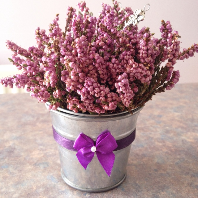 Heather in a silver pot
