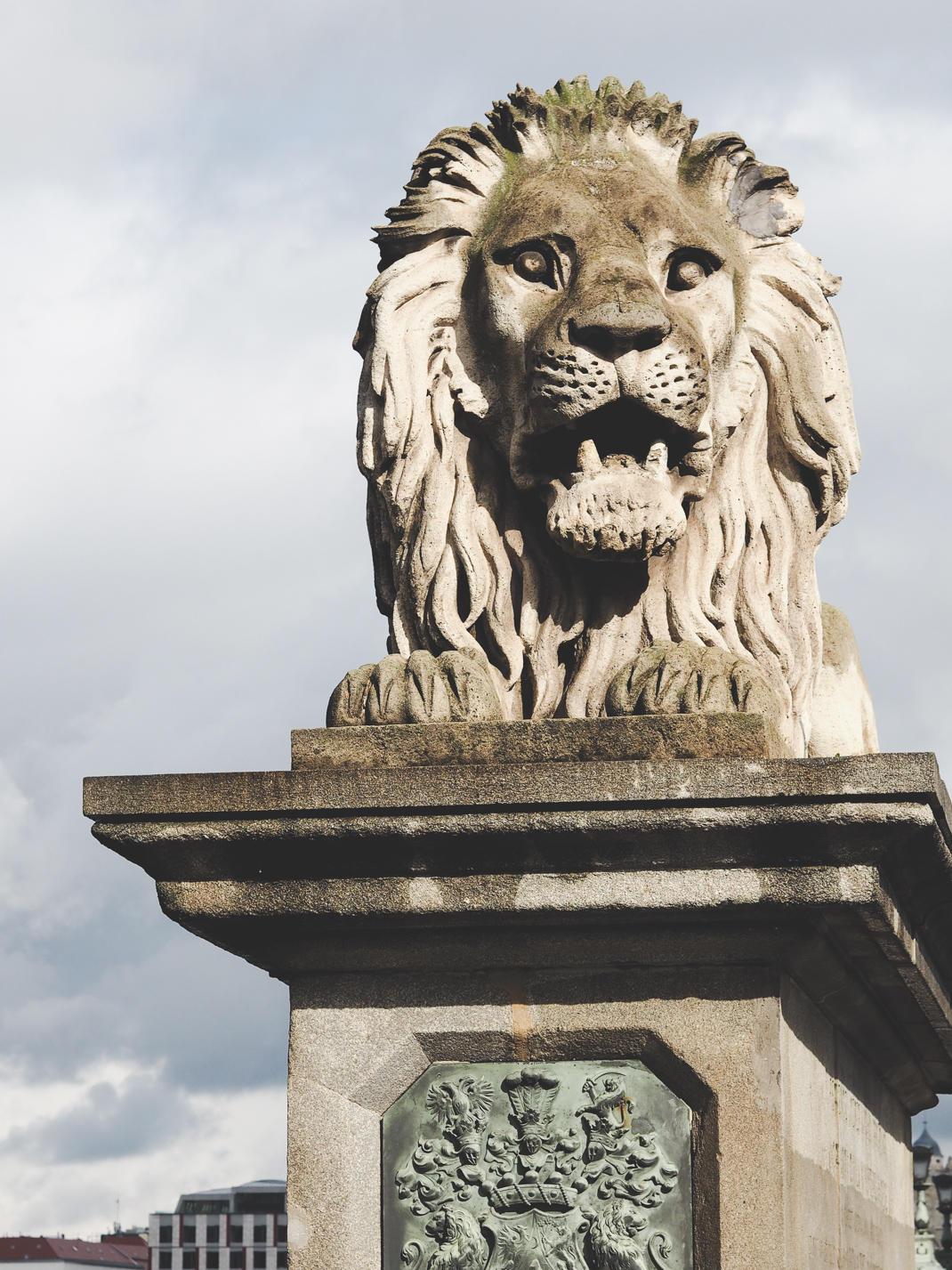 budapest chain bridge lions