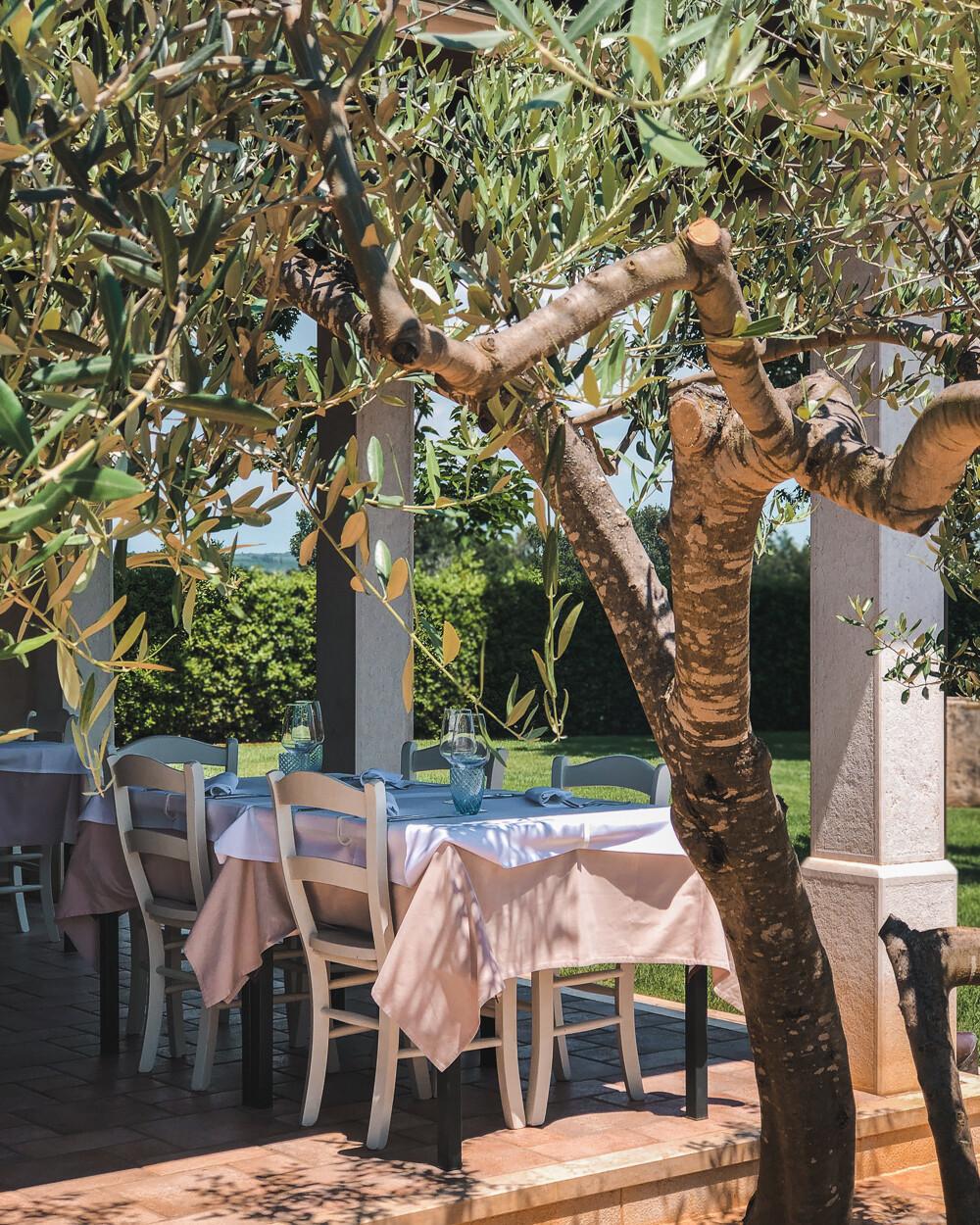 """Konoba """"Alla Beccaccia"""", traditional Istria restaurant"""
