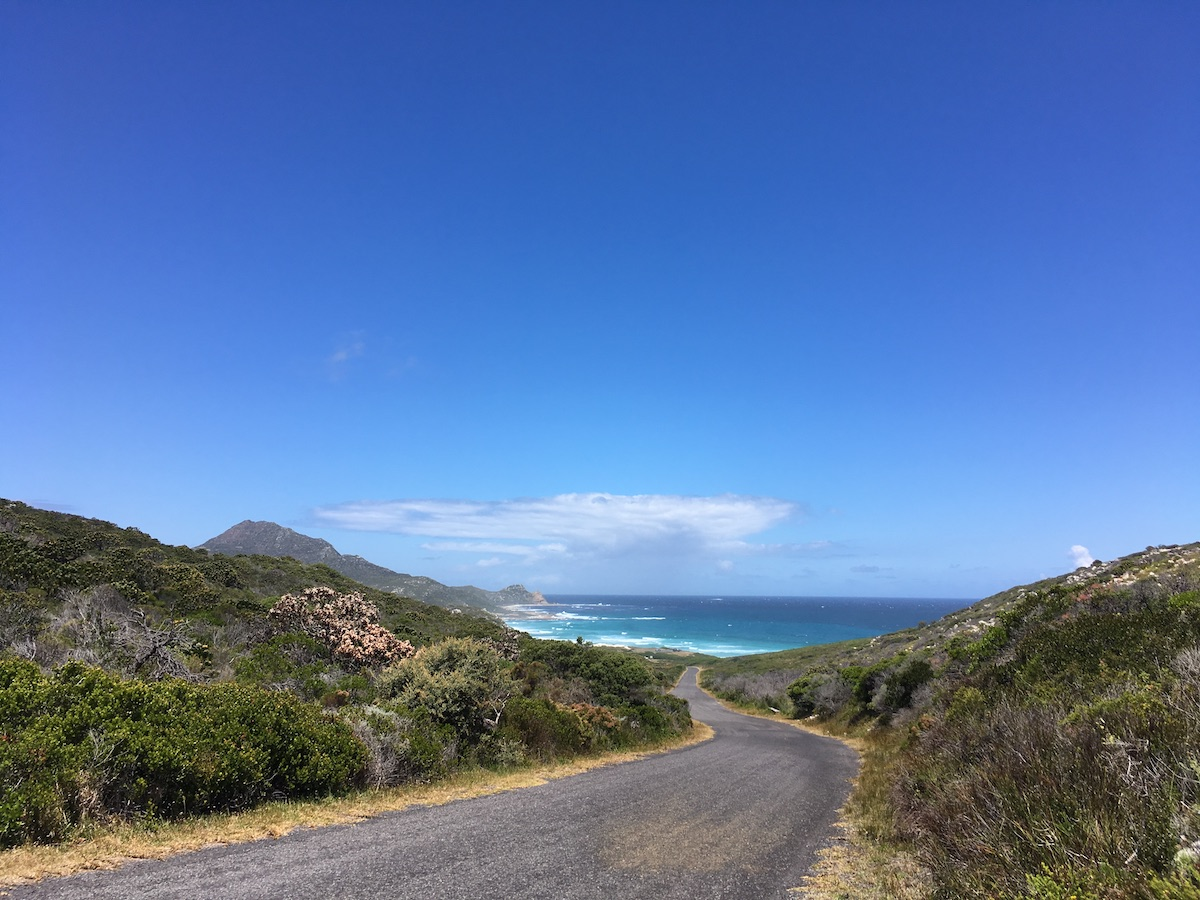 Way to Platboom Beach in wheelchair-friendly Cape Point Nature Reserve