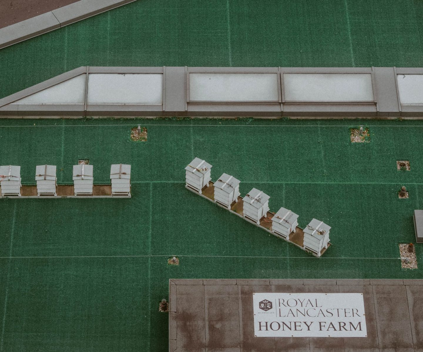 Royal Lancaster Hotel London Kate Winney Honey Farm
