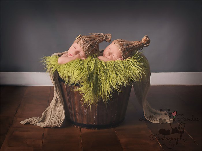 Newborn identical twin boys in bucket