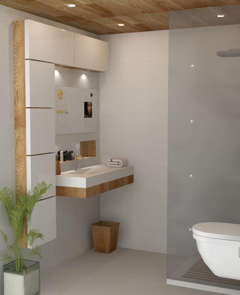 Cute bathroom design ideas on Bathroom Ideas Photo Gallery  id=94199