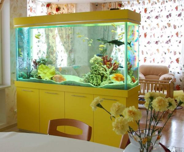 indoor fish tank