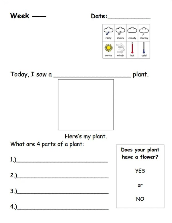 Plant journal weather and observation page
