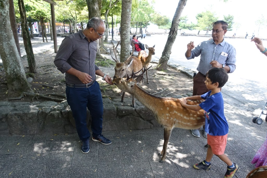 The first thing that we saw when we stepped onto Miyajima were the friendly deer!