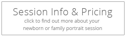 brisbane newborn photography session info and pricing