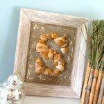 Framed Seashell Monogram