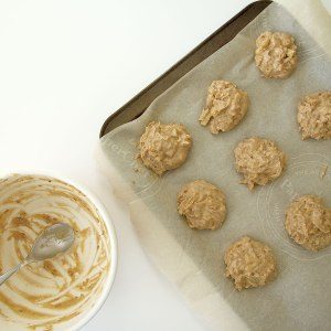 Vegan Apple Pumpkin Spice Cookies