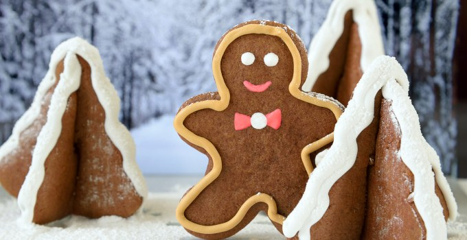 Chocolate Orange Gingerbread Cookies