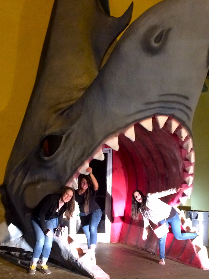 Shark in Pigeon Forge