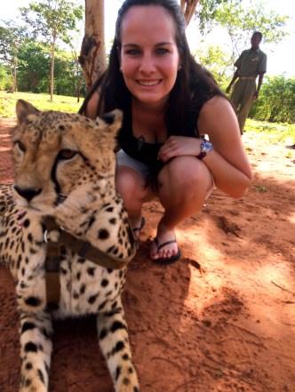 Run with the Cheetahs | Little Things Travel Blog