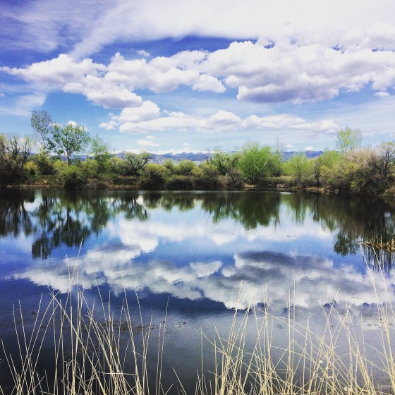 Sawhill Ponds Boulder Colorado