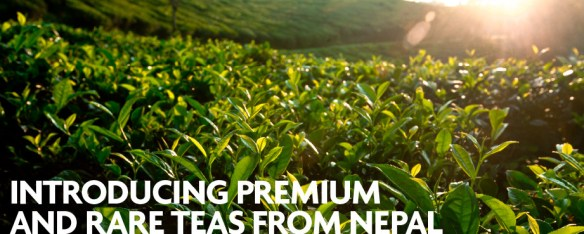 Nepali Tea Traders - Sustainable Gifts