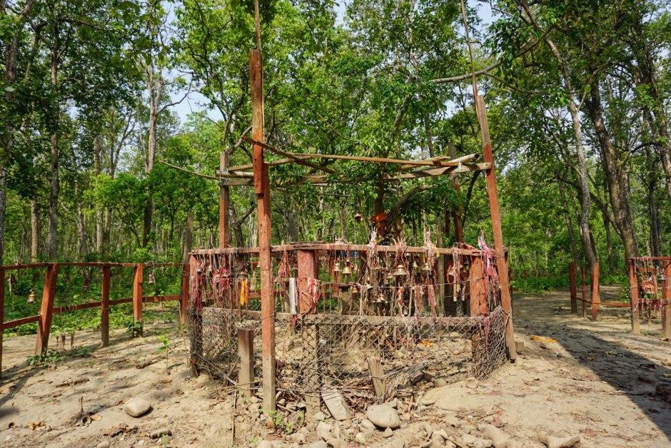 Balmiki Ashram Chitwan National Park Nepal Travel Guide