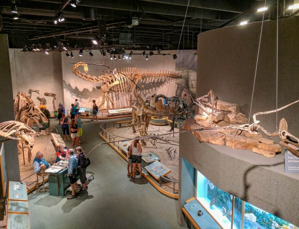 Your Guide to the Best Museums in Denver Colorado