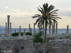 Тир Ливан