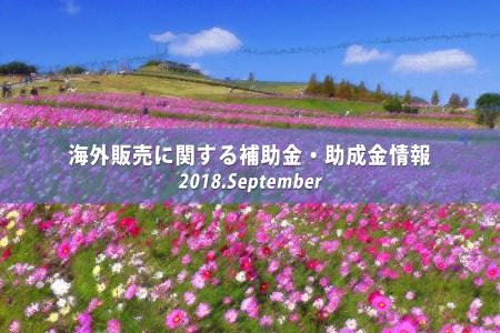 イメージ写真