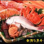 日本で取引されている45%が密漁アワビだ 第1,289号