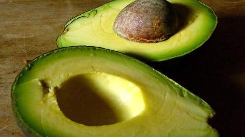 The next beer trend could be avocado.