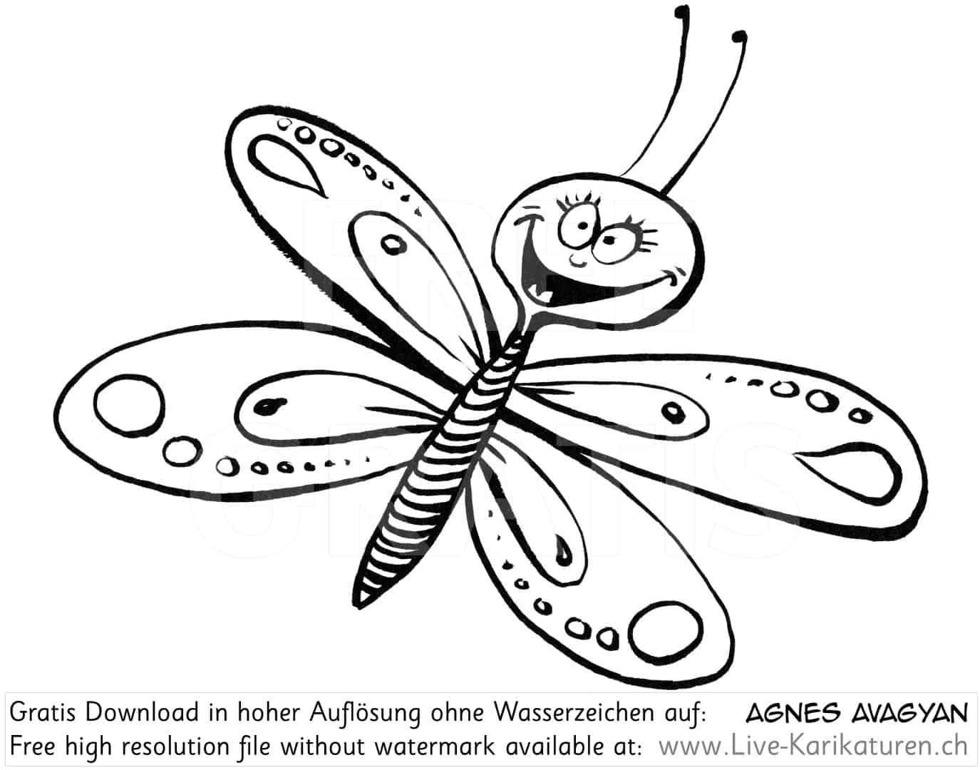Schmetterling Froehlich