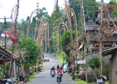 Decorated Village, Escape Tourism in Ubud Cultural Capital of Bali