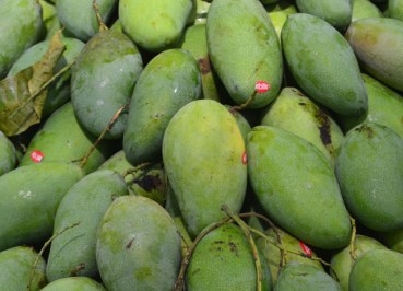 Unripe Mango Mamuang, Eating Thai Food, Local Food Habits in Thailand