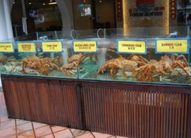 Fresh Crabs Promenade, What to Eat in Singapore, Top 5 Singapore Food