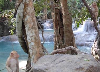 Erawan Falls,Day Trip Bangkok to Kanchanaburi Tour, Thailand