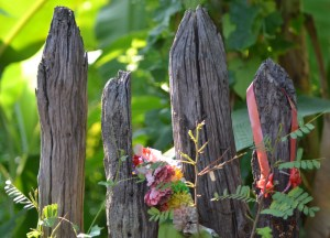 Garden Boundaries, Living in Rural Thailand, Isaan North East Thailand