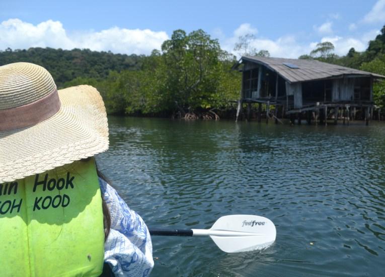 Kayaking through Mangroves, Captain Hook Resort Koh Kood, Travel Thailand