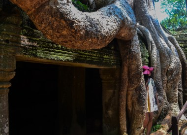 Tree Roots over Door, Introduction to Angkor Wat Two Day Tours