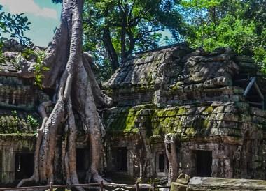 Ta Phrom Temple, Best Southeast Asia Travel Blog