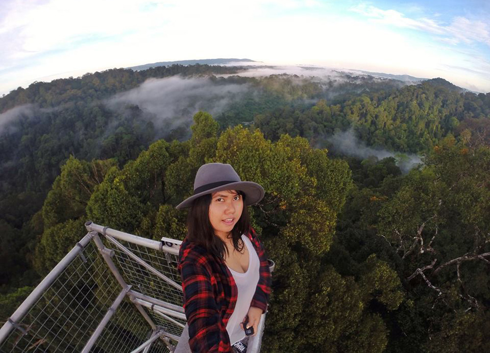 GoPro Canopy Walk, Ulu Temburong Brunei, Borneo Rainforests