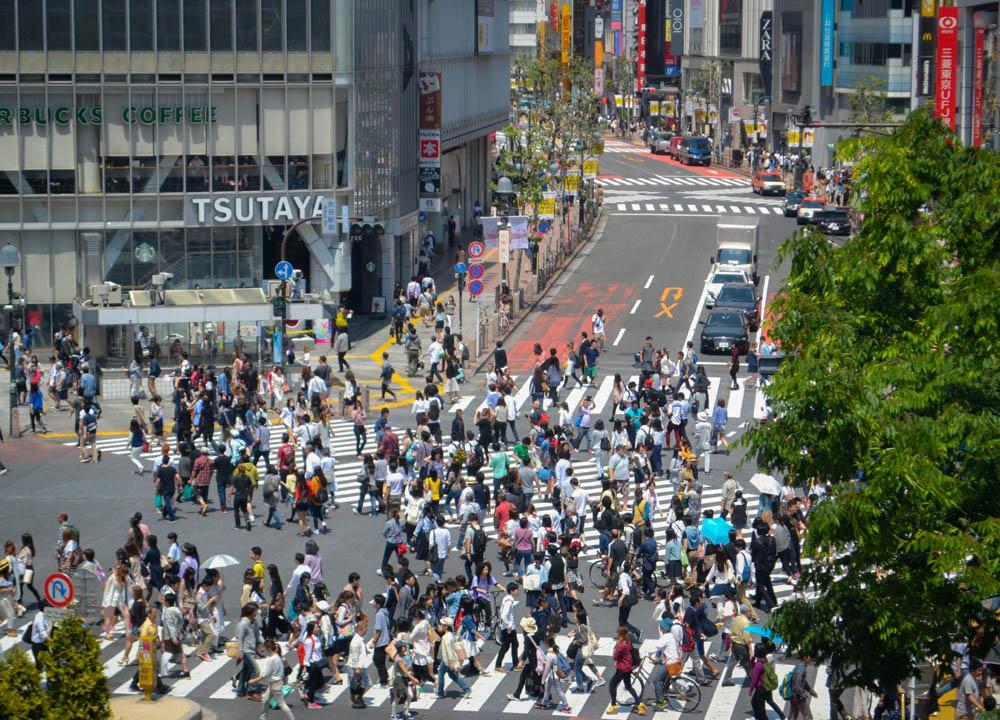 Above Shibuya, 2 Week JR Pass, Japan Train Travel