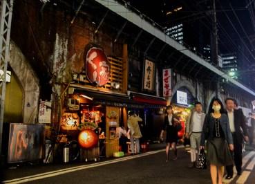 Shimbashi Restaurants, 2 Week JR Pass, Japan Train Travel