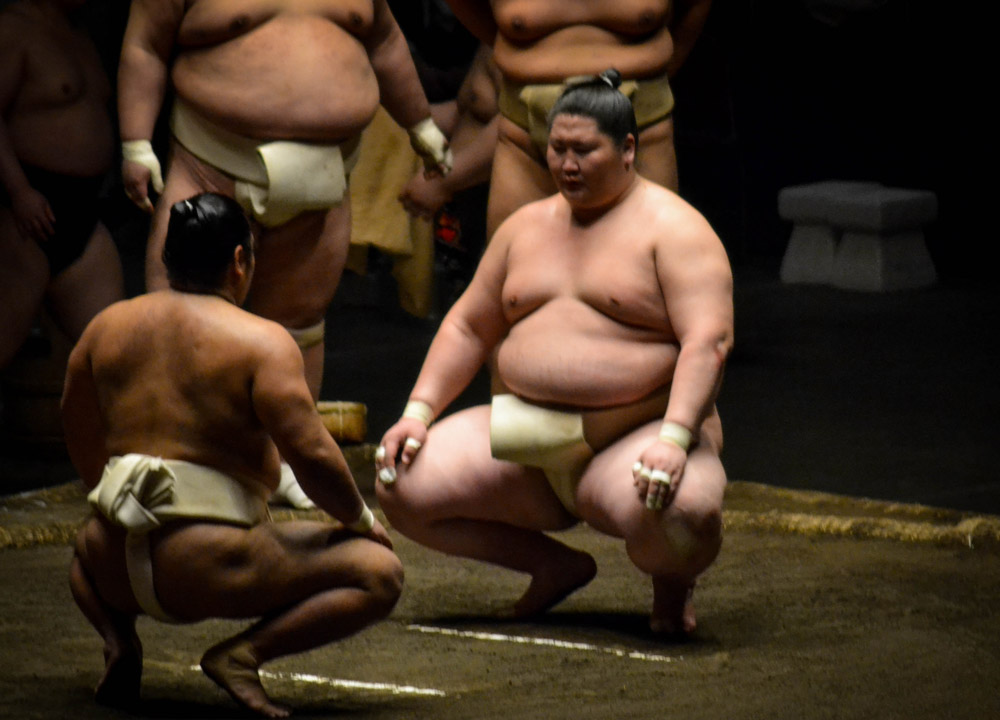Sumo Wrestling, 2 Week JR Pass, Japan Train Travel