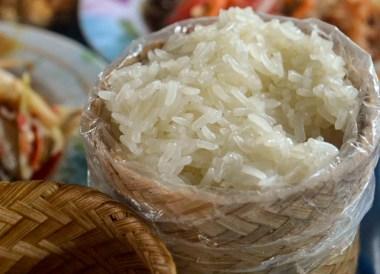 Sticky Rice, Best Som Tam Papaya Salad Thai Food