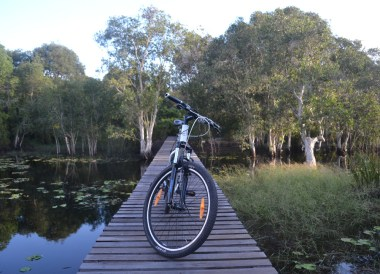 Cycling at Rayong Wetlands, Travel in Eastern Thailand
