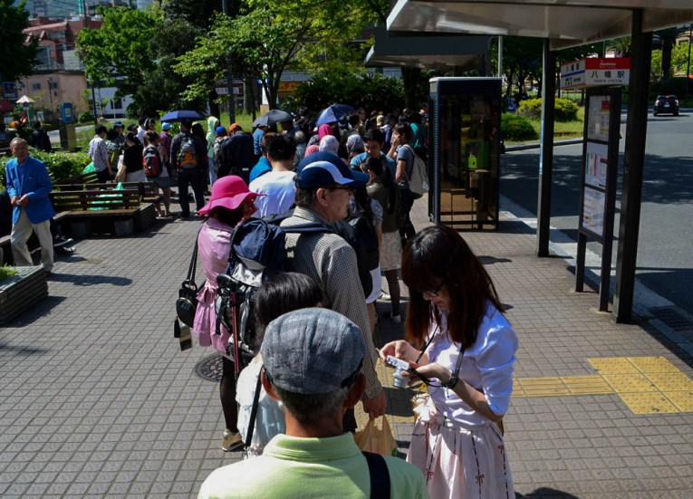 Bus Queues Travel to Kawachi Fuji Garden and Wisteria Tunnel