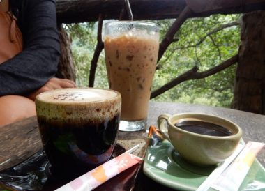 Fresh Coffees. Giant Tree House Coffee Shop in Chiang Mai Homestay