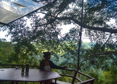 Restaurant Eating, Giant Tree House Coffee Shop in Chiang Mai Homestay