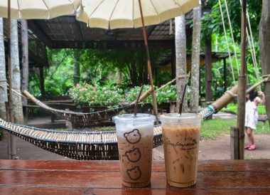 Baan Suan Ka Fe Chiang Mai, Top 10 Best Cafes and Coffee Shops in Chiang Mai Thailand Asia