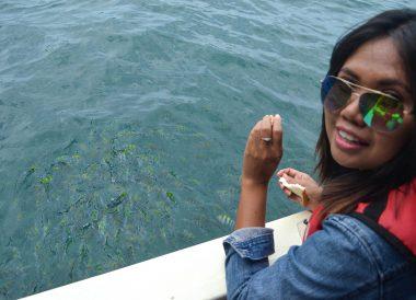 Feeding Fish, Langkawi Geoforest Park Tour Kilim, Resorts World
