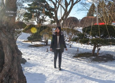 Snow, Honshu to Hokkaido by Train JR Pass, Sapporo Snow Festival