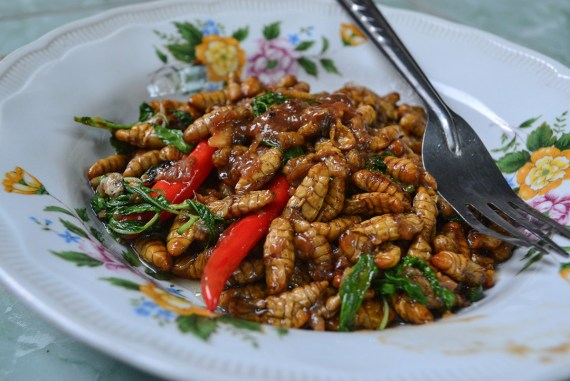 Fried Silk Worms, Thai Isaan Food, Eating in Northeastern Thailand