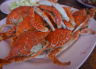 Blue Crabs at Ban Phe Pier Seafood, Travel in Eastern Thailand