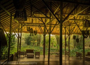 Lisu Lodge Eco Resort, Best Things to do in Northern Thailand