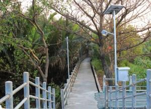 Cycling path bang krachao Things to do in Bangkok Thailand